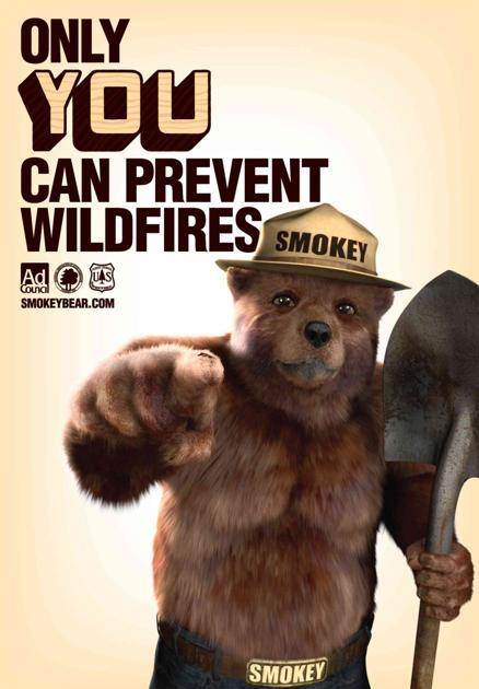 Smokey The Bear - Only You Can Prevent Wildfires