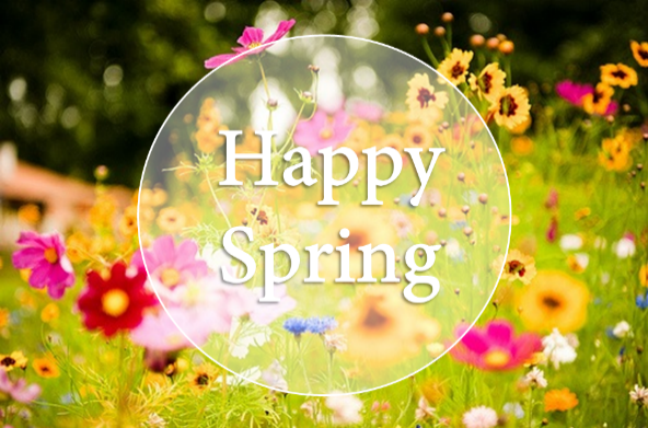wild flower background with white letters spelling Happy Spring